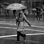 Sydney Rains